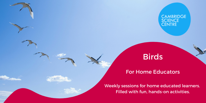 Home Educators Session – Let there be Flight